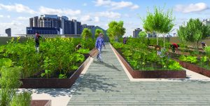 Rendering of the urban farm on the rooftop of the Lawson Centre for Sustainability